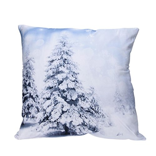 Pillow-top-matratze König-set (Snowflake Print Kissenbezüge Polyester Sofa Car Kissenbezug Home Decor LCLrute (C))