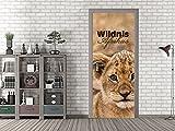 GRAZDesign 791439_92x213 Tür-Bild Spruch Wildnis Afrikas mit Löwe | Aufkleber fürs Wohnzimmer | Türfolie selbstklebend (92x213cm//Cuttermesser)