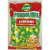 fondolinfa Limones Sustrato Pronto al uso para limones y plantas de cítricos unidades de 10Lt