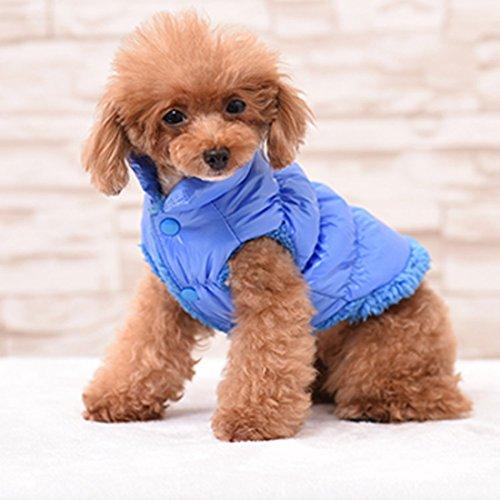 Rantow Otoño Invierno Mascota Gato del Perro: Ropa Abrigo cálido, Chaqueta con Capucha de 7 Colores para Mascotas clásica de Teddy, Yorkshire Terrier, Chihuahua, Pomerania