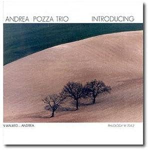 Andrea Pozza In concerto