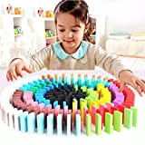 celebrationgift Wooden Toy Dominos 300 Pieces Multi Color For Kids And Adults ( Without Accessories)
