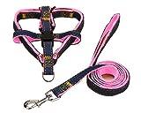 ZhuikunA Hundegeschirr und Leine Set Einstellbare Dauerhaft Stabil Brustgeschirr für Kleine Mittlere und Große Hunde Pink2 S
