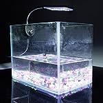 Kasstino 24 LED/48LED Highlighting Aquarium Light Fish Turtle Tank Light Clip Light Lamp (48LEDs) 13