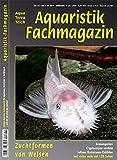 Aquaristik-Fachmagazin, Ausgabe Nr. 261 (Juni/Juli 18), Titelthema: ZUCHTFORMEN VON WELSEN und viele weitere Artikel im einzigen deutschen AquaTerra-Magazin auf 128 Seiten