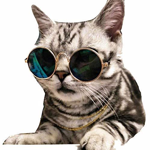 HongBao Nette und lustige Haustier-Sonnenbrille, Katzen-Sonnenbrille-Hundesonnenbrille, Klassische Retro Runde,Yellow