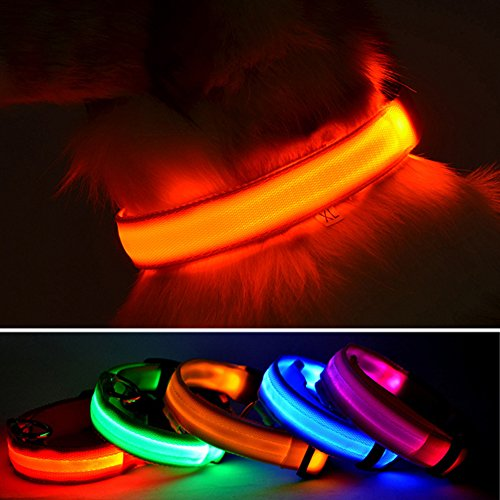 LED-Hundehalsband von Wey's, wiederaufladbar über USB, Sicherheit bei Nacht durch blinkendes Halsband, Leuchthalsband für Hunde mit verstellbarem Verschluss (Sicherheit Hund Halsband)