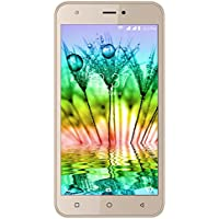Intex Note 5.5 (Champagne Gold)