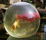 Blubb - die Teichkugel, Fischloft, Fishloft