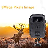 LLY 720P Jagdkamera 8M 2.4 Zoll LCD-Display Trail Wildlife Camera IP54 Wasserproof Night Vision for Wildlife Monitoring & Home Security & Hunting