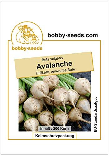 Bobby-Seeds Rübensamen Avalanche, weiße Bete Portion