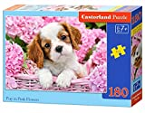 Castorland Pup in Pink Flowers 180 pcs Puzzle - Rompecabezas (Puzzle Rompecabezas, Fauna, Niños, Perro, Niño/niña, 7 año(s))