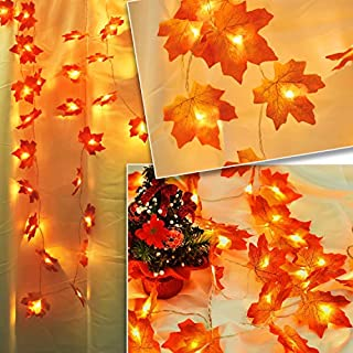 ANYOYO Thanksgiving Decorations,Harvest Fall Maple Leaf String Lights, 9.8 Feet 20 LED Faux Orange Waterproof Battery Powered, Garland Lighted for Party Indoor Outdoor Birthday Gift(Warm White)