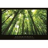 Empire 544926 Motivational - Opportunity Wald Forrests Motivations Poster Druck - Grösse 91.5 x 61 cm