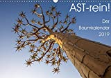 Astrein! - Der Baumkalender 2019 (Wandkalender 2019 DIN A3 quer): Bäume aus verschiedenen Perspektiven in 12 hochwertigen Fotografien (Monatskalender, 14 Seiten ) (CALVENDO Natur)