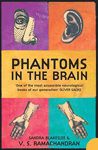 phantoms in the brain essay The mysterious phantom limbs essay sample this is a true story victor quintero, a seventeen years old high school-er missing his left arm, sat quietly in the patient seat.