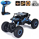 Waterproof Remote Controller Rock Crawler RC Monster Truck, Four Wheel Drive, 1:18 Scale 2.4 GHZ Toys