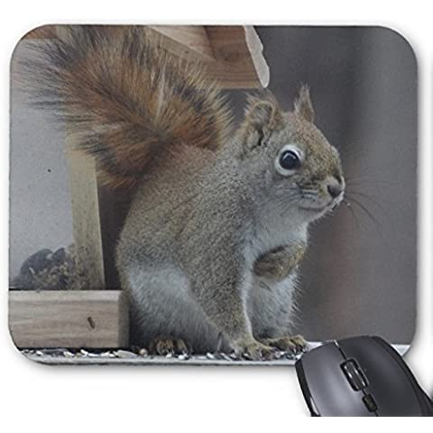 Lovely Gray Squirrel Mouse Pad rettangolare MousePad