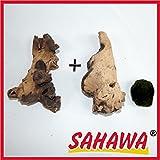 SAHAWA Wurzel, Mangrove, Mopani+ Mooskugel Gratis Aquarium, Terrarium Deko ca. 12-15 cm