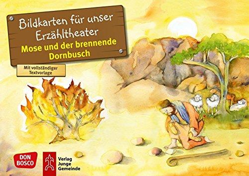 Mose und der brennende Dornbusch: Bildkarten für unser Erzähltheater. Entdecken. Erzählen. Begreifen. Kamishibai Bildkartenset. (Bibelgeschichten für unser Erzähltheater)