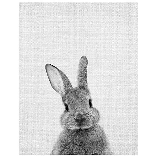 dragonaur Rabbit Print Poster Wa...