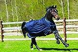 Horseware Amigo Bravo 12 - Winterdecke oder Regendecke 130cm 100g Füllung navy/navy & electric blue