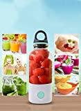Emsems Mini Blender Bottle, Portable può essere rimovibile Be Hand Blender, Electric Juicer Cup con vassoio di ghiaccio in silicone per Fruit Smoothie Baby Food Picnic, USB ricaricabile (blu)
