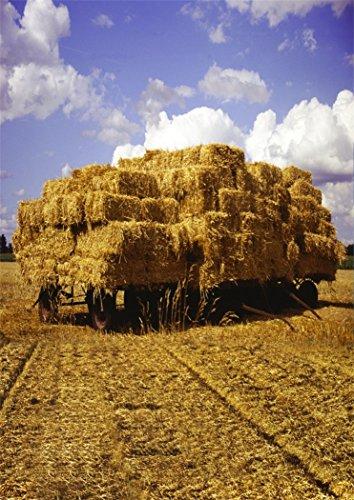 aaloolaa-5x7ft-vinyl-photography-backdrop-photo-backgrounds-haystack-flat-car-straw-hay-floors-blue-