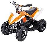 Actionbikes Motors Mini Elektro Kinder Racer 800 Watt ATV Pocket Quad Kinderquad Kinderfahrzeug… (Orange/Weiß)