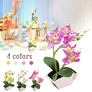 Sue Supply Orquídeas artificiales de mariposa Phalaenopsis, innovador ramo de flores de seda Bonsai, de moda, con macetas de imitación para decoración interior y exterior, 4 colores