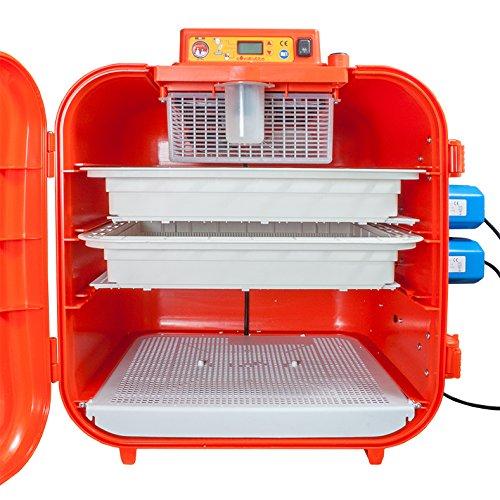 Covatutto 108 Brutmaschine / Brutgerät / Motorbrüter – Vollautomatisch – Incubator – digital - 2