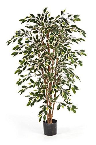 artplants Kunst-Ficus Avellino mit 430 grün-weißen Blättern, 120 cm – Kunst Baum/Deko Ficus