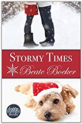 Stormy Times: a contemporary Christmas romance