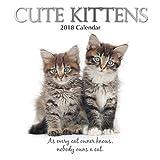 2018 Cute Kittens Wall Calendar 30 cm x 30 cm - With 210 Calendar Stickers