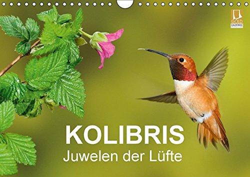Kolibris - Juwelen der Lüfte (Wandkalender 2018 DIN A4 quer): Atemberaubende Flugaufnahmen von Kolibris (Monatskalender, 14 Seiten ) (CALVENDO Tiere) [Kalender] [Apr 01, 2017] - birdimagency, BIA Kolibris Der Welt