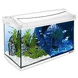 Juego completo de acuario para pecera, 60 L, color blanco
