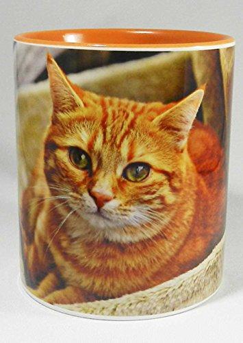 Half a Donkey The Big Ginger Cat Tasse with Orange Glazed Handle and Inner