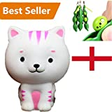 Clearance/ Bluester Funny Cat Stress Reliever, Squishy Slow Rising Squeeze Toy (White)