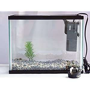 Starter Aquarium Small Fish Tank Complete With Filter, Plant & Fish Net