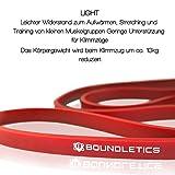 MEHRFACHER-TESTSIEGER: Resistance Band – Fitnessbänder für Crossfit und Calisthenics – Klimmzug-Band in verschiedenen Widerständen zum effektiven Muskelaufbau - 2