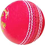 HRS Yorker Day and Night Leather Cricket Ball, Pink  Cricket Balls 51x 2BoFlFZDL