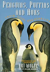 Penguins, Puffins And Auks: Their Lives and Behavior by William Ashworth (1993-09-21)
