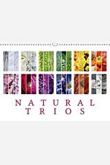 Natural Trios (Wall Calendar 2019 DIN A3 Landscape): Enjoy the beauty of natural colour trios (Birthday calendar, 14 pages ) (Calvendo Places) Kalender