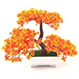 24x7eMall PVC Artificial Plants with Pot and Grass (Orange, 20x24cm)
