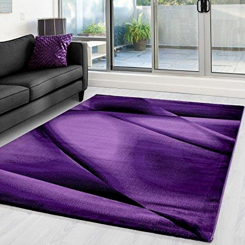 Preisvergleich Produktbild Moderner Designer Wohnzimmer Teppich Miami 6590 LILA - 80x150 cm