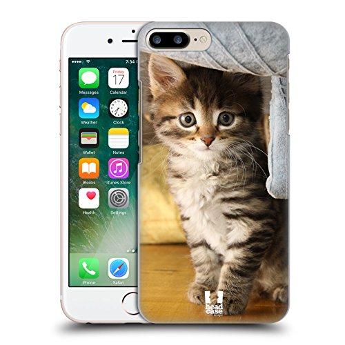 Head Case Designs Chaton Avec Arc Rose Chats Étui Coque D'Arrière Rigide Pour Apple iPhone 3G / 3GS Chat Tigré