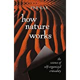 How Nature Works: The Science of Self-Organized Criticality