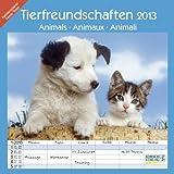 Tierfreundschaften - Familientimer 2013: Broschürenkalender mit Ferienterminen