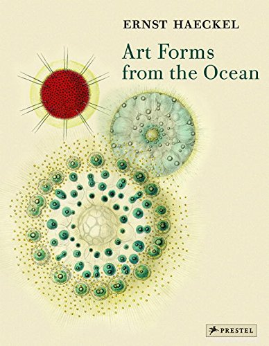 Art Forms From The Ocean: The Radiolarian Atlas Of 1862
