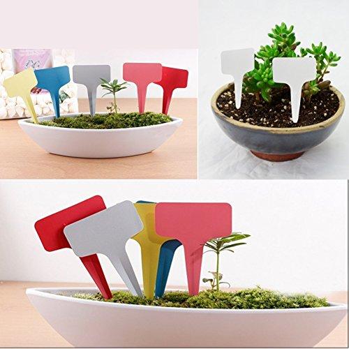 -imakarr-etiquetas-identificativas-de-plastico-para-plantas-o-arboles-de-semillas-jardin-maternal-x1